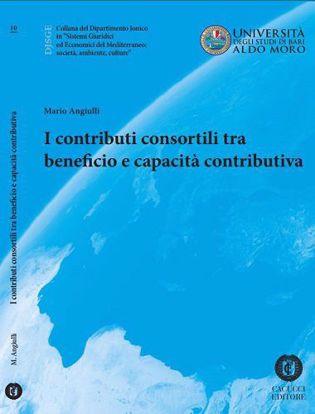Immagine di 10 - I contributi consortili tra beneficio e capacità contributiva