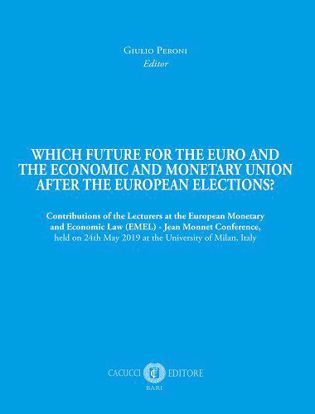 Immagine di Which future for the euro and the economic and monetary union after the european elections?