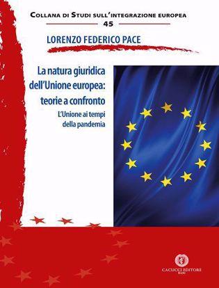 Immagine di 45 - La natura giuridica dell'Unione europea: teorie a confronto